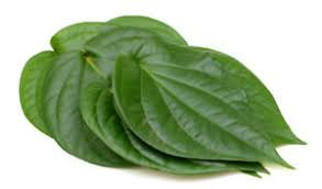 Fresh Paan Leaves Each