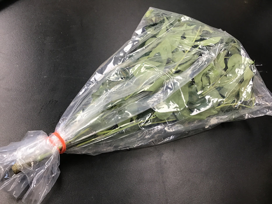 Fresh Curry leaves Bag