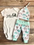 Little Peanut Mint Elephant, newborn outfit, coming home outfit