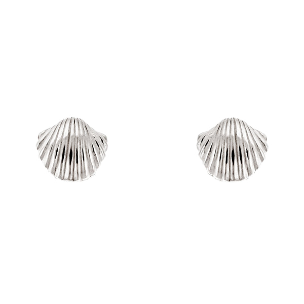 Seashell Clam Studs