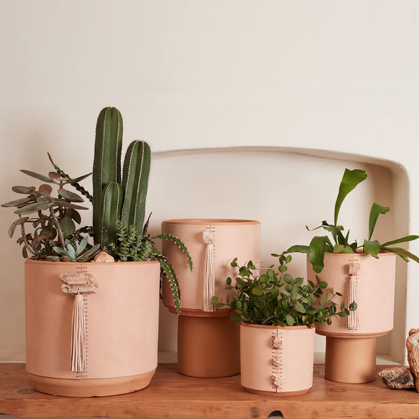 Ghost Ranch Planter Collection by Field Guide - Field Guide