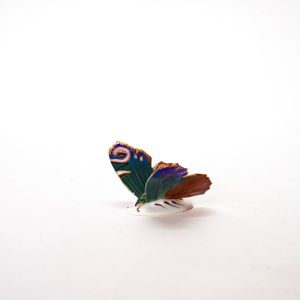 Karl Ens Porcelain Butterfly - Field Guide