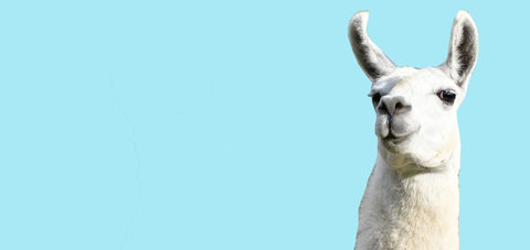 Do not fear. This is a llama test. [left]