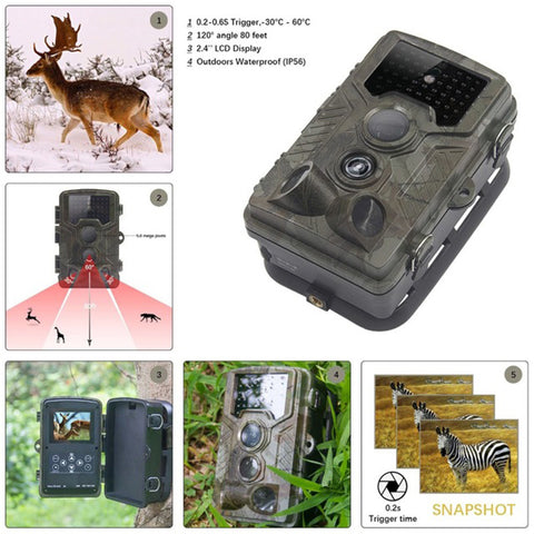 Skatolly HC800A Hunting Trail Camera Full HD 12MP 1080P Video Night Vision Camera Trap Scouting Infrared IR Trail Camera TrapXNC
