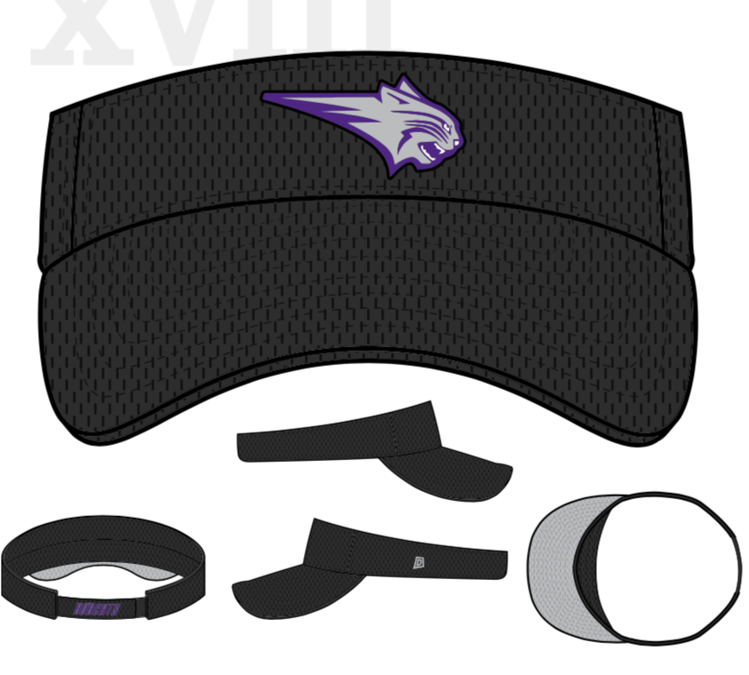 404-Coaches Visor