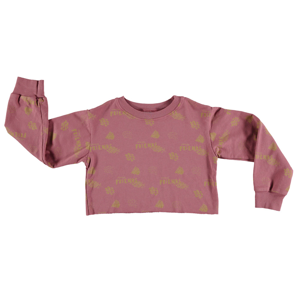 Crop Mercurio Friends Sweatshirt