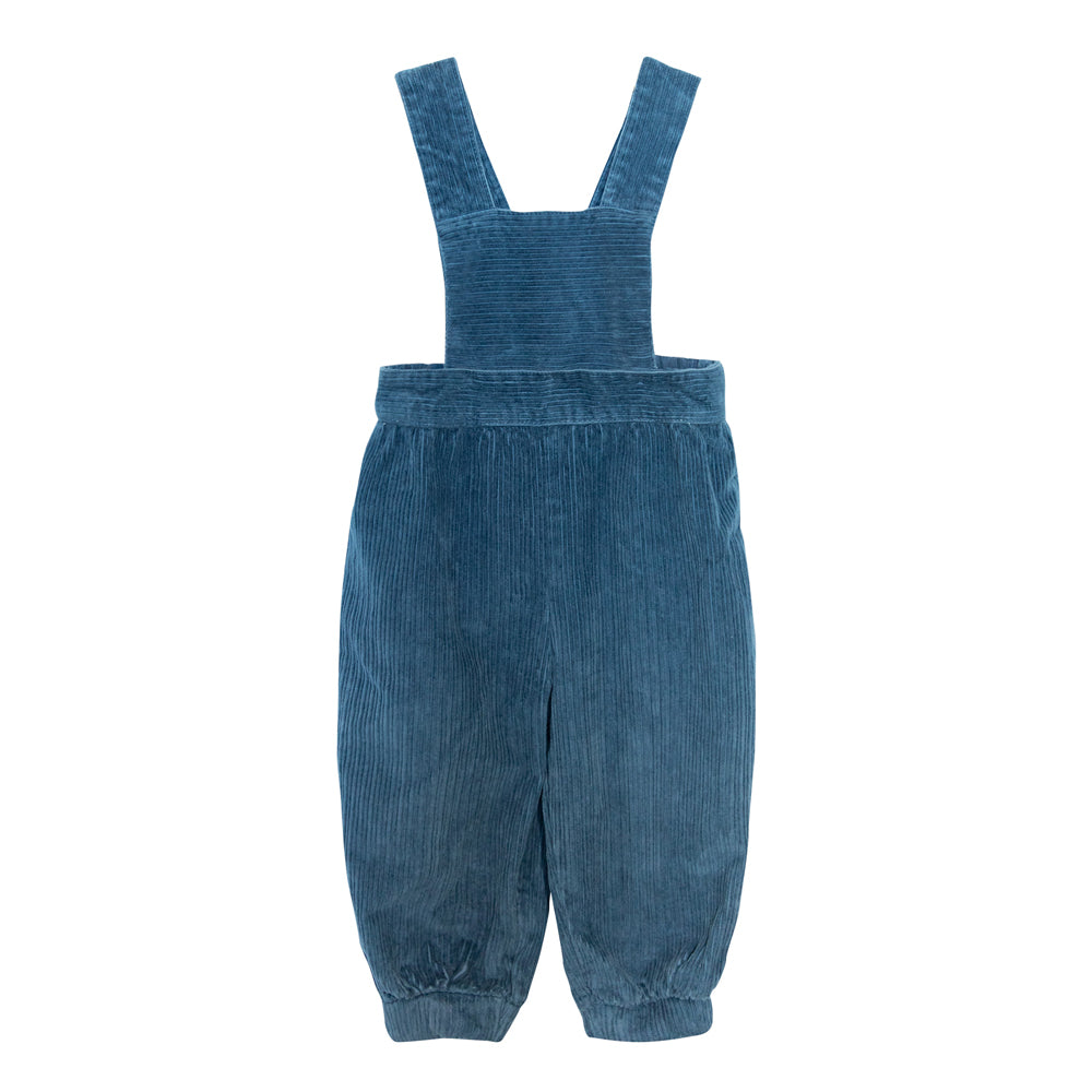 Blue Ginger Jumpsuit