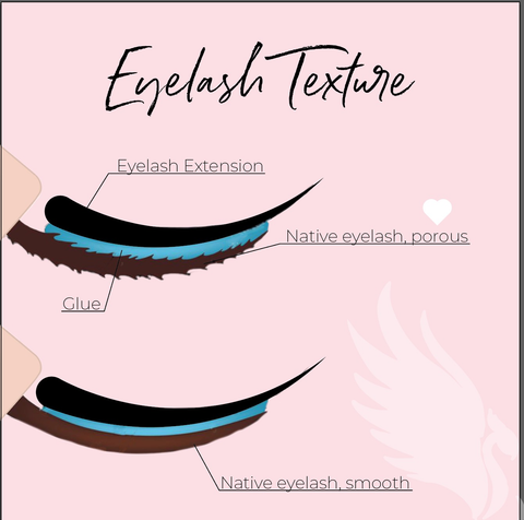 lash texture or lash porous comparison