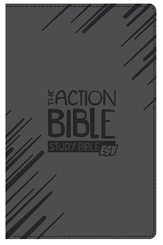 The Action Bible Study Bible Esv (Gray)