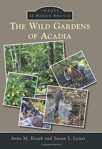 Wild Gardens Of Acadia, The (Images Of Modern America)