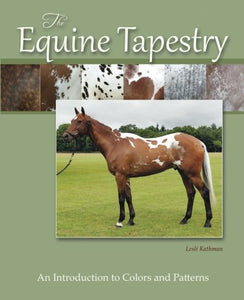 The Equine Tapestry: An Introduction To Colors And Patterns