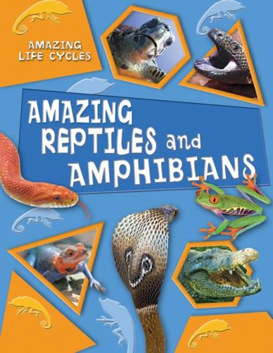 Amazing Reptiles And Amphibians (Amazing Life Cycles)
