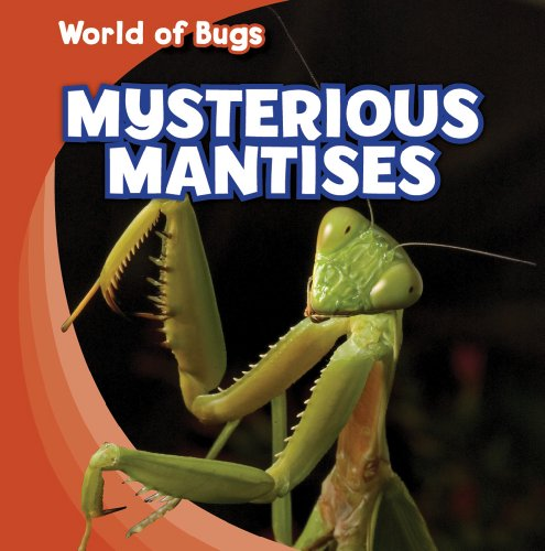 Mysterious Mantises (World Of Bugs)