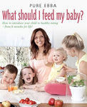 What Should I Feed My Baby: Introducing Your Child To Life-Long Healthy Eating