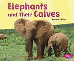 Elephants And Their Calves (Animal Offspring)
