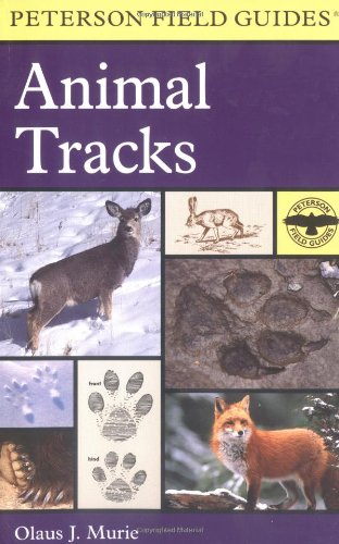 A Field Guide To Animal Tracks (Peterson Field Guides)