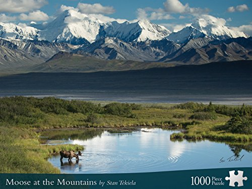Moose At The Mountains (Wildlife Photography Puzzles)