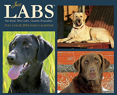2016 Just Labs Box Calendar