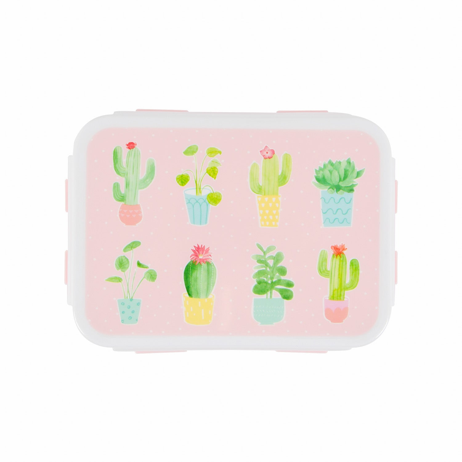 Colourful Cactus Lunch Box - MissieMay