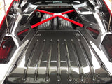 IMS Carbon fiber Huracan engine covers.