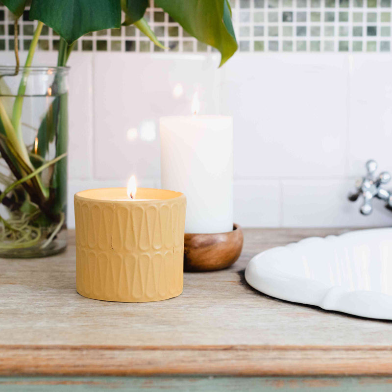 melodysusie scented candles to remove bad odor
