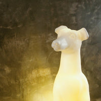 Archie the Whippet Lamp