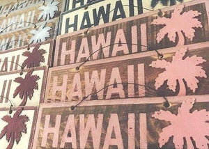 Hawaii%2Bwith%2BPalm.jpg