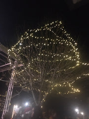 Tinmath Tree Lighting