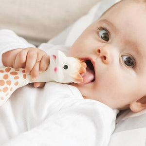 Sophie The Giraffe-Feeding - Teether-Sophie | Baby Little Planet