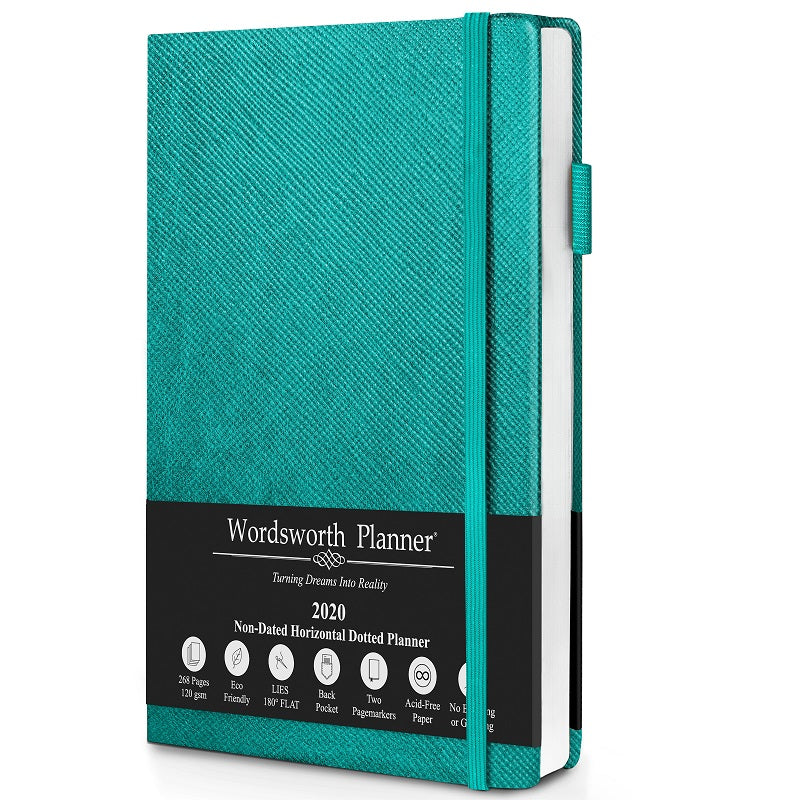turquoise dotted goal planner