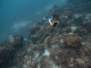 5 Reasons why coral reefs are important for us humans