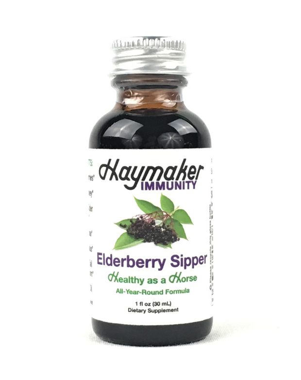 Elderberry Sipper - 6 pack