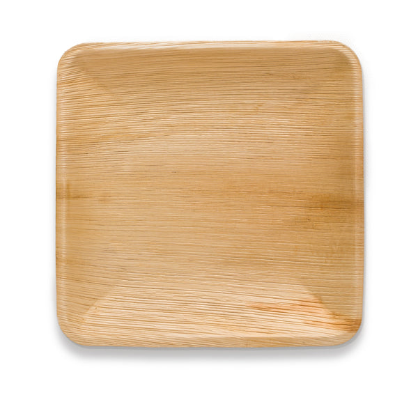 Square Plate 10 Inch