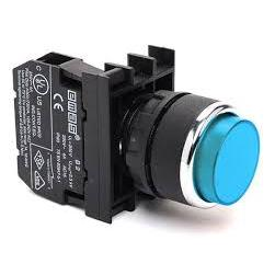 Extended Blue Push Button - B200HM - 22mm Diameter - 1 NC