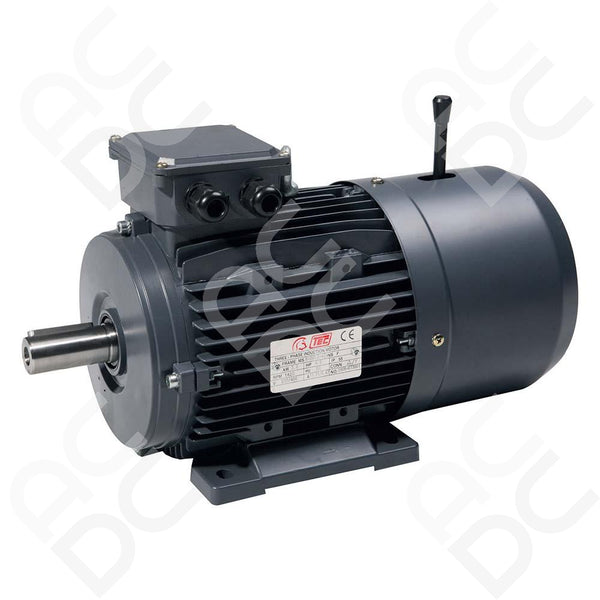 0.37KW Brake Motor - 4P - TEC (Select Mounting)