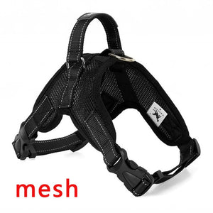 Dog Harness and Collar in One