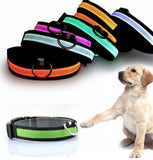 Glow in the Dark Nylon LED Dog Collar