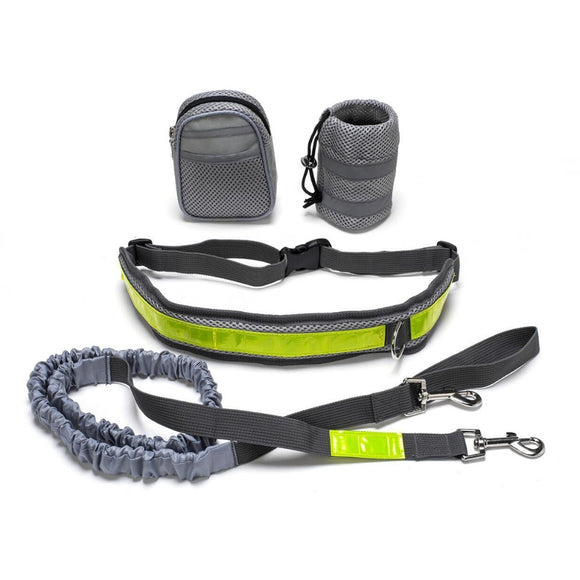 Handsfree Jogging Dog Lead and Adjustable Collar for a Large Dog