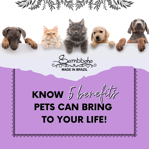 5 benefits pets can bring to your life