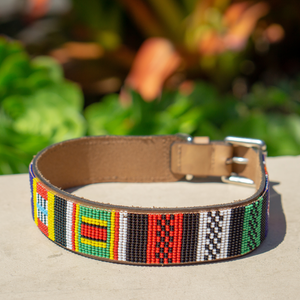 Rainbow Sambboho dog collar