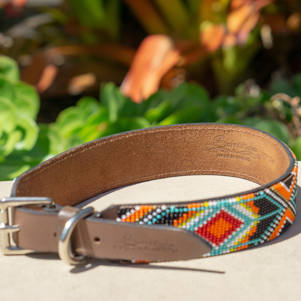 Biarritz Sambboho dog collar