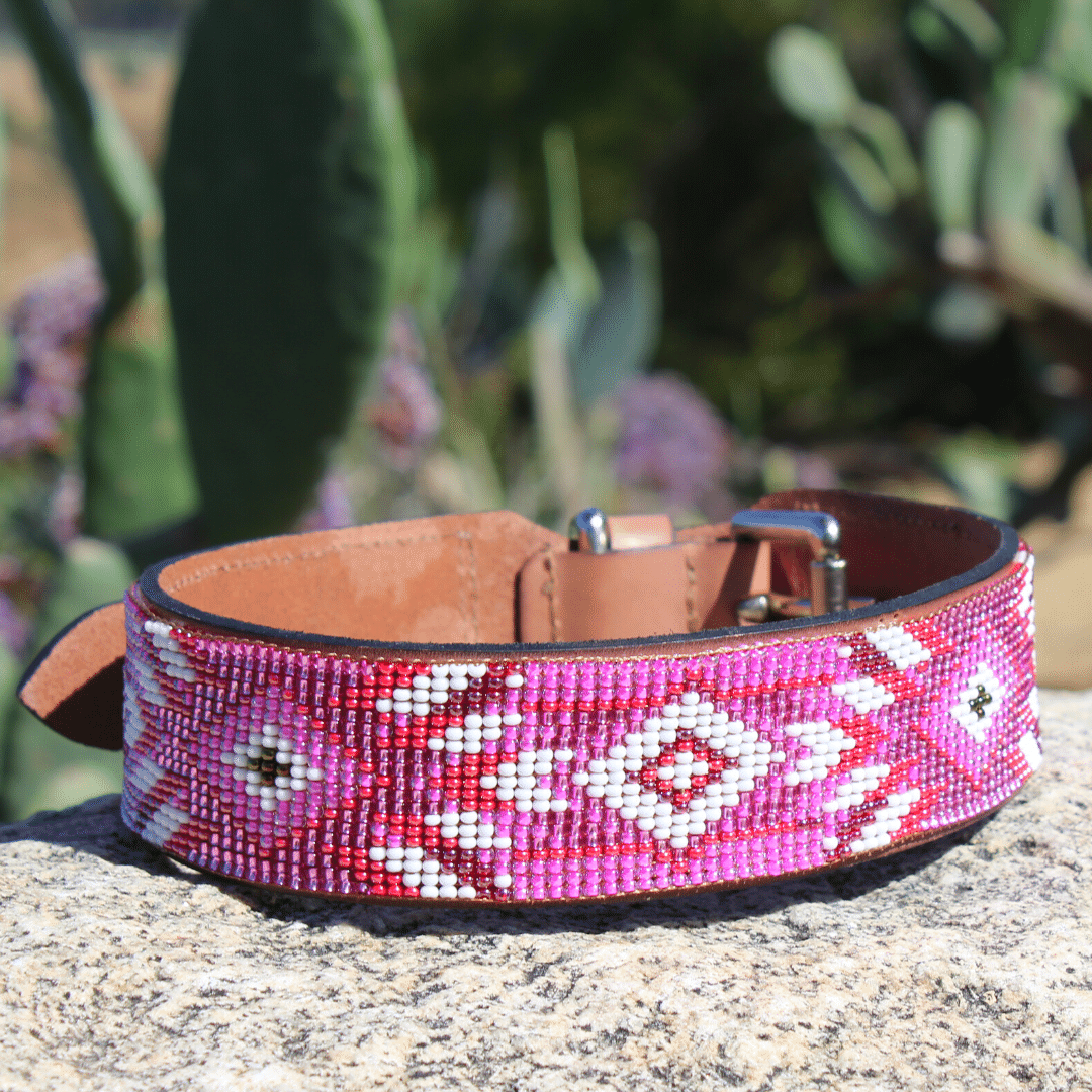 Melrose Sambboho dog collar (Deluxe Edition)