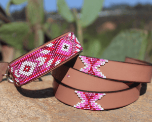 Matching leash/dog collar Melrose Sambboho Bundle