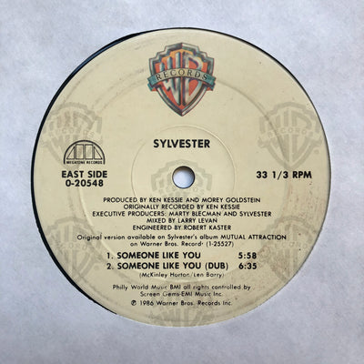 1986 Sylvester 'Someone Like You' 12'' Vinyl Maxi Single