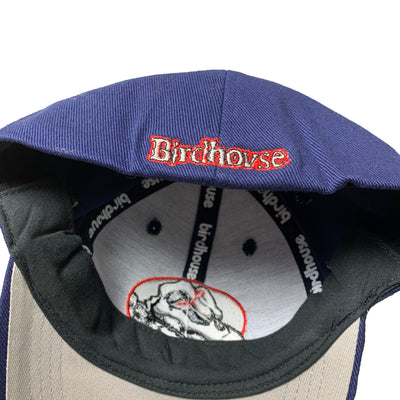 00's Tony Hawk Birdhouse Cap