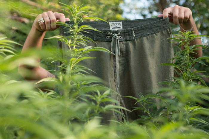A Beginners Guide To Hemp Clothing!