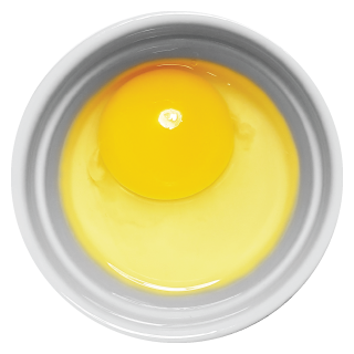 Doggiecatssen Raw Egg in ramekin natural healthy home-made cooked pet food