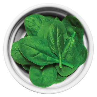 Doggiecatessen Spinach in ramekin natural healthy home-made cooked pet food