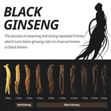 Incredible Effects of Korean Black Ginseng in a Human Body Study Proves