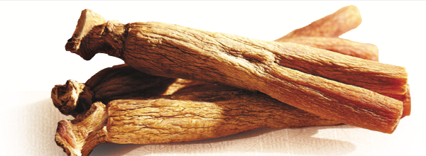 Korean Ginseng Is a Stamina Booster, a Natural Viagra*